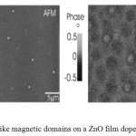 Figure 5. Bubble-like magnetic domains on a ZnO film doped with 0.1 at% Nd