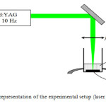 Fig.3. Schematic representation of the experimental setup (laser ablation) (Ref. 25)