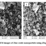 Figure 1& 2: SEM images of Zinc oxide nanoparticle using Zingiber officinale
