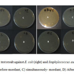 Figure 10: Antibacterial test result against E. coli (right) and Staphylococcus aureus (left) A) untreated wool B) Before-mordant, C) simultaneously- mordant, D) After- mordant