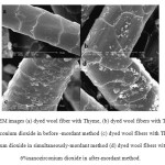 Figure 6: SEM images (a) dyed wool fiber with Thyme, (b) dyed wool fibers with Thyme and 6%nanozirconium dioxide in before -mordant method (c) dyed wool fibers with Thyme and 6%nanozirconium dioxide in simultaneously-mordant method (d) dyed wool fibers with Thyme and 6%nanozirconium dioxide in after-mordant method.