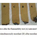 Figure 9: Images of wool fabrics after the flammability test (A) untreated wool, (B) Before-mordant, (C) simultaneously-mordant (D) after-mordant
