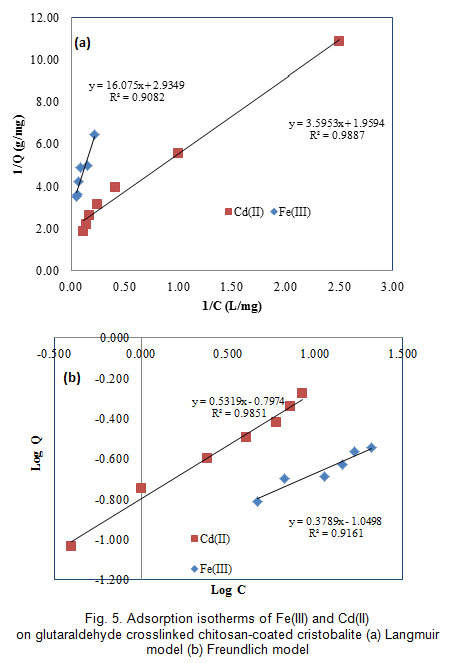 Comparative adsorption of Fe(III) and Cd(II) ions on