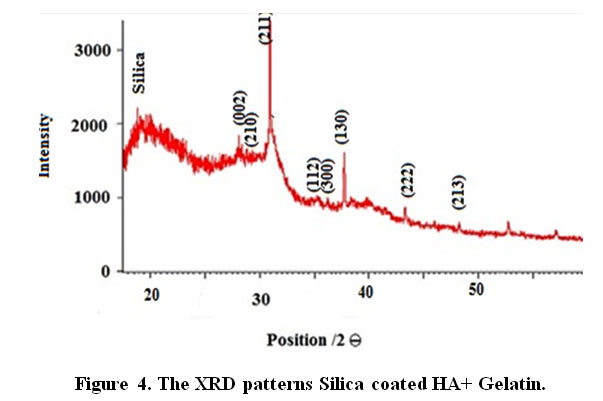 the effects of silica and a nature polymer on the size and properties of nano