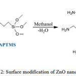Scheme 2: Surface modification of ZnO nanoparticles