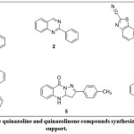 Figure 1: Some quinazoline and quinazolinone compounds synthesized by catalytic support.