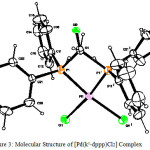 Figure 3: Molecular Structure of [Pd(k2-dppp)Cl2] Complex