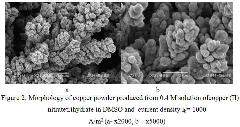 Electrocrystallization of Copper Powders from Dimethylsulphoxide