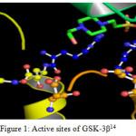 Figure 1: Active sites of GSK-3β14