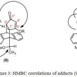 Figure 3: HMBC correlations of adducts (9) and (10)