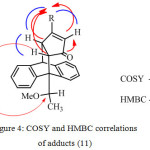 Figure 4: COSY and HMBC correlations of adducts (11)