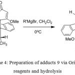 Scheme 4: Preparation of adducts 9 via Grignard reagents and hydrolysis