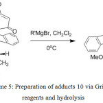 Scheme 5: Preparation of adducts 10 via Grignard reagents and hydrolysis