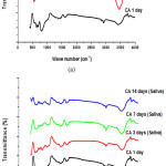 Figure 10: IR spectra of pure CA cured for 1, 3, 7 and 14 days in: (a) distilled water and (b) artificial saliva