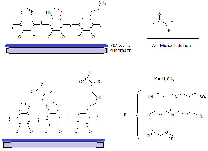 Recent Trends in Mussel-Inspired Catechol-Containing Polymers (A