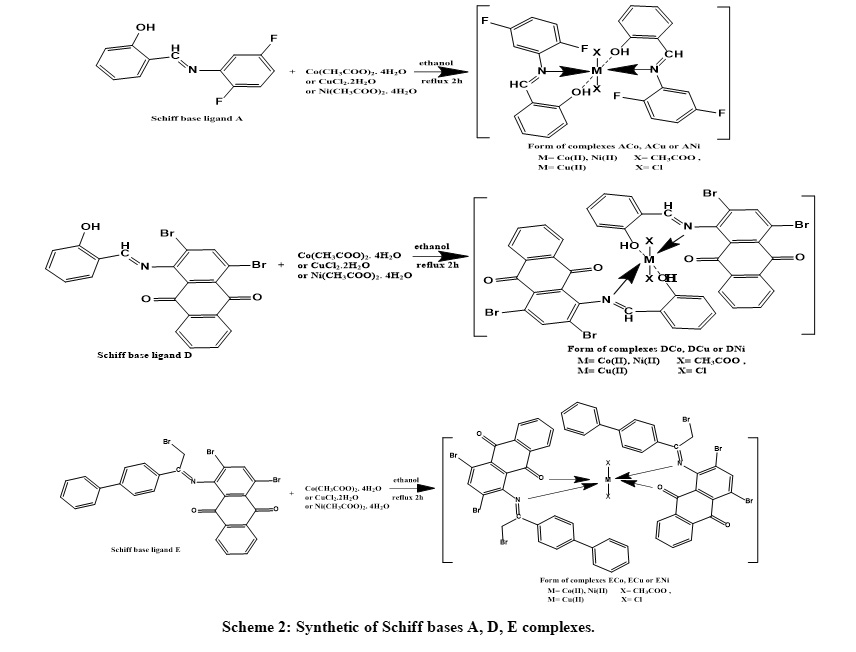 Novel Nickel (II), Copper (II) and Cobalt (II) Complexes of